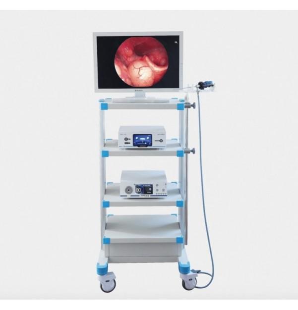 Endoscopic system LORAN