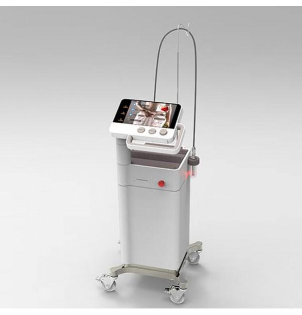 Fractional Non-ablative laser Gigaa Laser BeautyScan